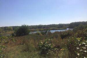 Продам земельный участок (9 соток), Новомосковск (Решкут)