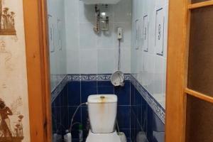 Продам 3-х комнатную квартиру на Левобережном-3